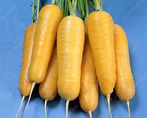 100 graines / Paquet Heirloom arc-en-Blanc Jaune Orange Violet Rouge carotte Semences Mélangé légumes Delicious Seeds bonsaï légumes rouges