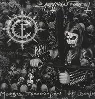 Morbid Fascination [12 inch Analog]