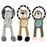 RIO Direct Small Dog Toys, Squeak Dog Toys, 3 Pack Dog Plush Toys, Dog Chew Toys, Interactive, Chewing and Durable Dog Toys for Puppy Dogs and Small Dogs Playing Toy (A)