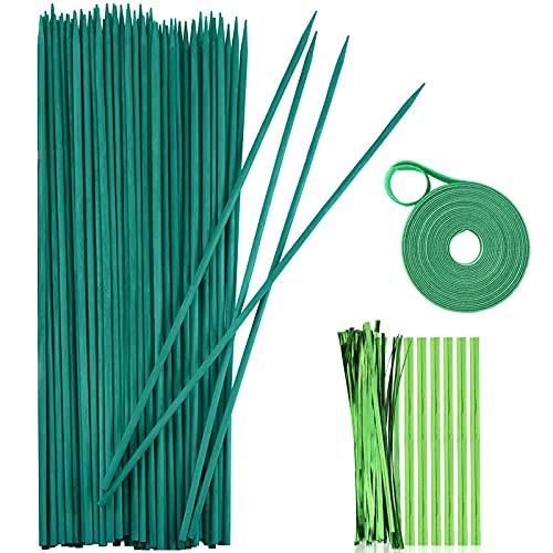 Sunshine smile Pflanzstäbe,50 Stück Pflanzenstützen,Pflanzstab Bambus,Grüne Bambusstäbe 38cm,für Haus Garten Kletterpflanze Erweiterung der Pflanzenstütze,Rankhilfe für Pflanzen