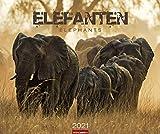 Elefanten - Kalender 2021 - Weingarten-Verlag - Fotokalender - Wandkalender mit beeindruckenden Naturfotos - 54,8 cm x 45,8 cm