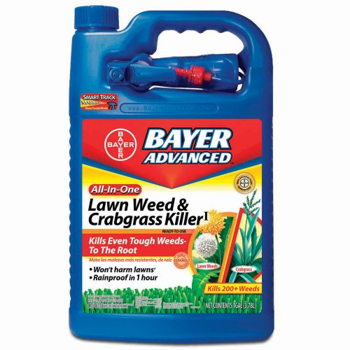 Bayer Advanced 701110a 4 Lb All In One Buy Online In Guernsey At Desertcart