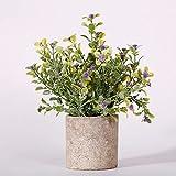 ZSooner Plantas artificiales en macetas, decoración de boda, fiesta, bonsái, baño, oficina, oficina, hotel, decoración del hogar