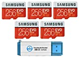 Samsung 256GB Evo Plus MicroSD Card (Bulk 5 Pack) Class 10 SDXC Memory Card with Adapter (MB-MC256G) Bundle with (1) Everything But Stromboli 3.0 Reader with SD & Micro (TF) Slots