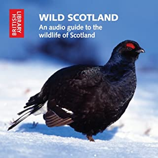 Wild Scotland cover art