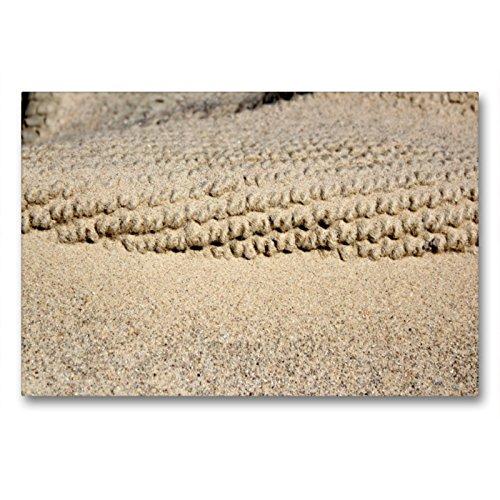 Premium Textil-Leinwand 90 x 60 cm Quer-Format Spuren im Sand | Wandbild, HD-Bild auf Keilrahmen, Fertigbild auf hochwertigem Vlies, Leinwanddruck von Maria Reichenauer