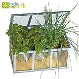 Serra in vetro con telaio–piante aromatiche