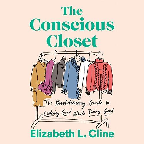 The Conscious Closet cover art