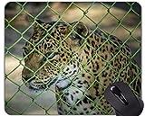 Mauspad mit Rastkante, Leopard Leopard Mauspad mit aufgenähter Kante