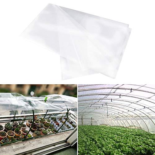 Almabner Pflanzen-Abdeckung, extra stark, Pflanzenschutzfolie, Frostschutzfolie, für den Winter, schützt Pflanzen vor rauem Wetter, Tieren, Vögel, Wie abgebildet, 2 x 3 m