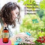 Naissance Huile Végétale de Neem Vierge (n° 235) - 1 litre - 100% pure et naturelle #3