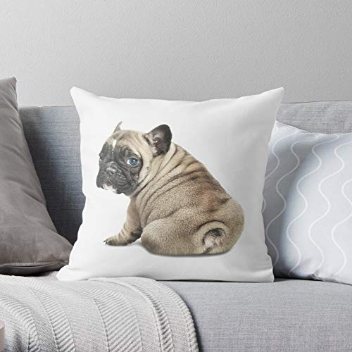 Puppy Pet Cute Portrait Bulldog Adorable French Family Frenchie -Animal - Decorative Pillow Cases Home Decor Customize Polyester Pillowcase Double Side Printed Customize