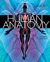 Human Anatomy by Saladin, Kenneth. (McGraw-Hill Science/Engineering/Math,2013) [Hardcover] 4th Edition