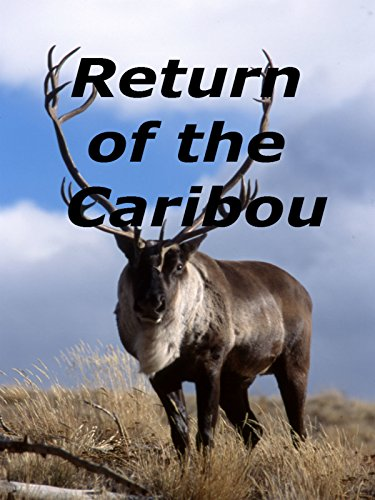 Return of the Caribou