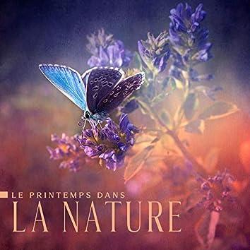 Le printemps dans la nature: Forêts fleuries, Ruisseaux vivants, Chants d'oiseaux, Pluie rafraîchissante