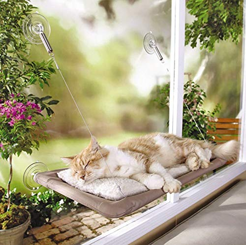PMS WINDOW CAT BED IN COLOUR BOX