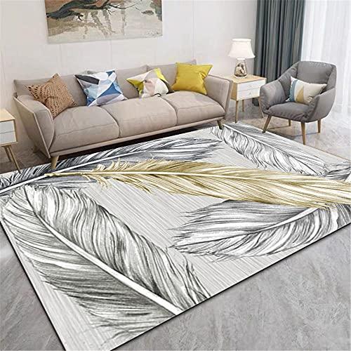 CCTYJ Textura Clara, patrón de Pluma Gris Amarillo, Textura Suave, fácil de Limpiar, sofá de Corredor de la Alfombra de decoración-50x80cm Calidad Precio relación demás Limpiar salón