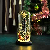 Icreer Christmas Tree Gifts Christmas Decorations,Mini Christmas Trees LED Decoration,Christmas/Xmas Gifts for Family, Friends, Kid's Bedside Decor,Height 8.5''