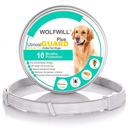 WOLFWILL Collar de Pulgas y Garrapatas para Perro,Acción Prolongada 10 Meses de Protección y Prevención contra Pulgas Garrapatas,Piojos,Talla Única para Todos,Ajustable, Impermeable