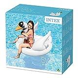 Schwimmtier – Intex – 56287 - 4