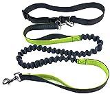 Pugga® NEUERÖFFNUNGSANGEBOTE elastische und flexible Jogging Hundeleine, haltbarer Doppel Dual Griff Bungee Gummi Leine, reflektierend, 1,2 m bis zu 2m dehnbar, verstellbarer Hüftgurt (Passend bis zu 1 m Taille) aus reißfestem Nylon für Hunde bis max. 45 kg, Farbe: grau und grün