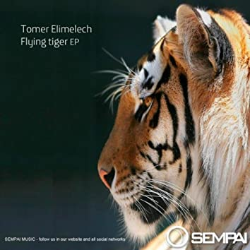 Flying Tiger EP