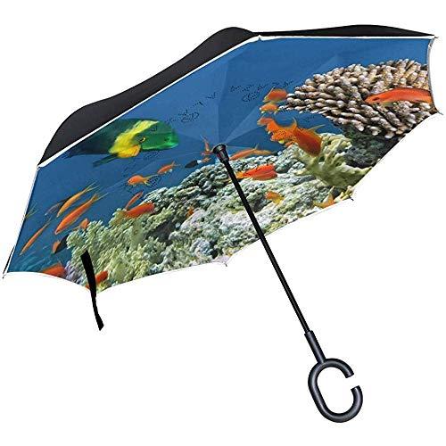 mengmeng Reverse Umbrella, Pretty Fish Pattern Inverted