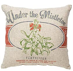 Farmhouse Christmas Decor A throw pillow with mistletoe on it.