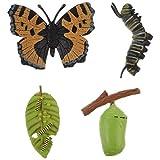 YARNOW 4 Piezas de Juguetes para El Crecimiento de Insectos Juguetes de Ciclo de Vida de Mariposa Juguetes de Animales Figuras de Gusano de Seda Modelo de Crecimiento de Mariposa para