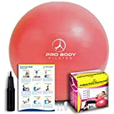 Exercise Ball - Professional Grade Anti-Burst Fitness, Balance Ball for Pilates, Yoga, Birthing, Stability Gym Workout Training and Physical Therapy (Red, 65 cm)
