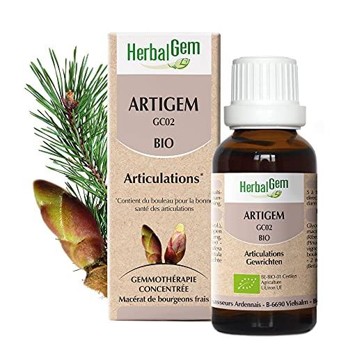 Herbalgem | Artigem Complexe Articulations BIO | Bourgeons de Pin, de Vigne, de Bouleau et de Cassis | 50 ml