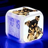 W-JIUJIA Perro Lindo Perro Alarma de Mascotas 7 Color LED Luz de Alarma Digital Reloj de Alarma para niños Cumpleaños Luz de Noche Luz de Reloj electrónico Reloj .50
