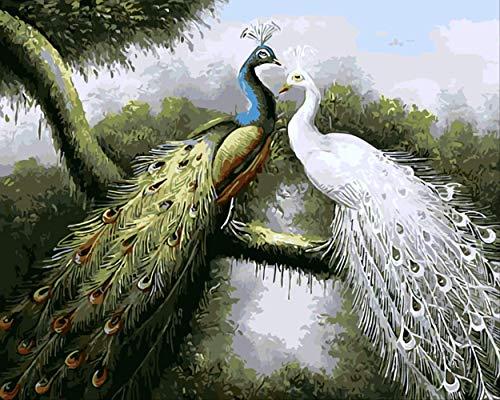 Frameless Animal Peacocks DIY Schilderijen, door Numbers Kits Kleurplaten Olieverfschilderij Op Canvas Tekening, Home Artwork Wall Art Picture 40x50cm