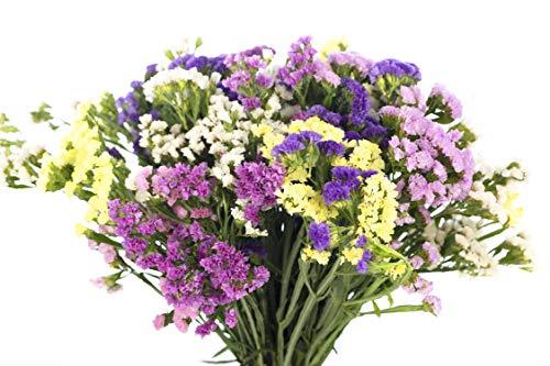 Ramo de Flores Statice Variadas, Flores Naturales a Domicilio Blossom®   Flores...