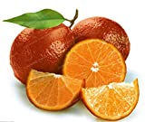 Generic Fresh 30 piezas de semillas de fruta de limón rojo para plantar marrón
