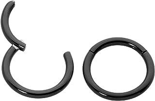 365 Sleepers 1 Pair Stainless Steel 16G (Regular) Hinged Segment Ring Hoop Sleeper Earrings 6mm/7mm/8mm/9mm/10mm/11mm/12mm/13mm/14mm/16mm