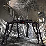 OBABA Halloween Spider Decorations,Giant Realistic Hairy Spiders,Fake Scary Furry Black Party Supplies Poseable Props for Outside Indoor Patio,Yard,Garden,House Décor (6 FT)