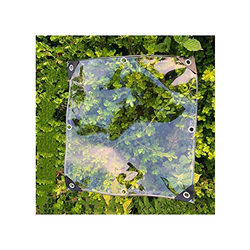 DLLY Lona,Toldos Planta Proteccion Transparente,Ojales Reforzados,para Invernaderos,Jardines,Balcones,Piscinas,Coches,Cortavientos,Impermeable,Antipolvo,Lona Antienvejecimiento,1.2x2m/3.9 * 6.6ft
