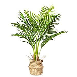 PLANTAE Mini Artificial Areca Palm Tree 30″ Inch Tall 8 Realistic Branches Faux Plant for Home and Office Decor Indoor with Handmade Natural Seagrass Woven Basket Included