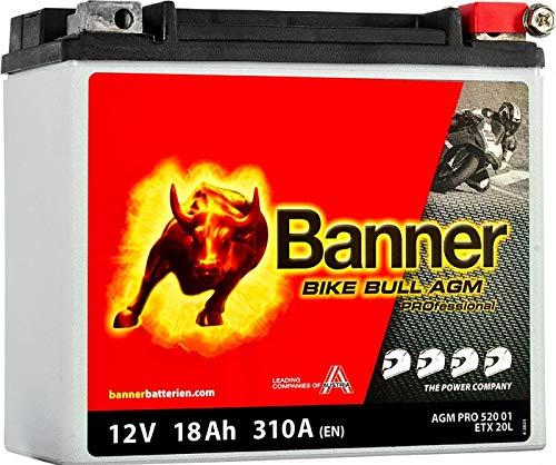 Banner AGM Pro 52001Akku Moto Bike Bull