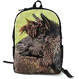 Black Lama Head Furry Animal Mochila Escolar Personalizada Lunchbox Bag Set para Estudiantes y Adultos 16.5 X 12.5 X 5.5 Pulgadas