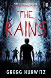 The Rains (Rains Brothers) (English Edition)