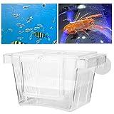 Split Fish Tank, Caja de cría de Peces de Acuario, 1 Pieza de acrílico Auto-Flotante y montado en la Pared para Peces pequeños, Peces heridos, camarones