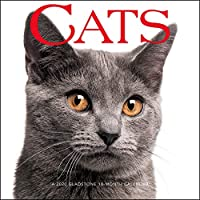 Cats 2020 ミニカレンダー