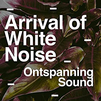 Arrival of White Noise