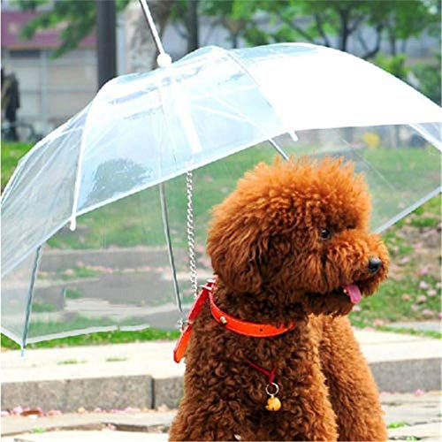 Yukie Nützlicher transparenter PET-Regenschirm für kleine Hunde, Regenschirm mit Hundeleinen, hält das Haustier trocken und bequem bei Regen und Schnee