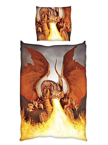 Renforce Bettwäsche 135x200cm Feuer Drache Grau Terra Fire Dragon