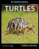 My Favorite Animal: Turtles (English Edition)