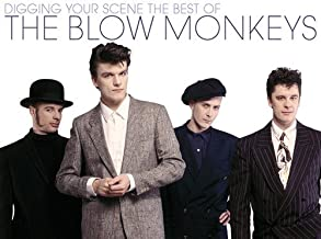 Digging Your Scene: Best of Blow Monkeys