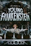 Young Frankenstein. Family Halloween movie.